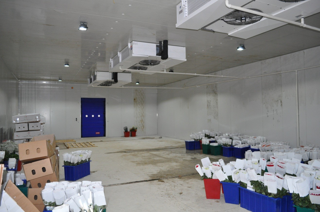 Cold Rooms Javvagreen Limited