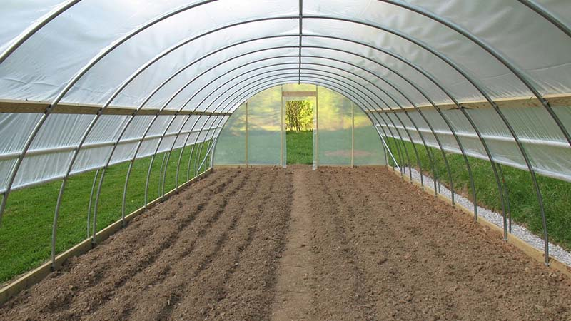 Greenhouses For Sale Javvagreen Limited