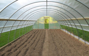 home-greenhouses-for-sale-poly-tunnels