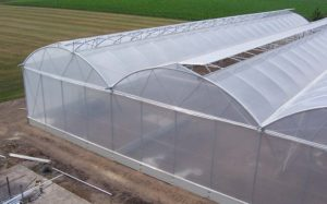 home-greenhouses-for-sale-shade-houses