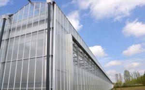 home-greenhouses-for-sale-venlo
