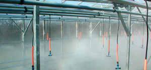 irrigation-page-overhead-fogging-2