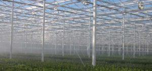 irrigation-page-overhead-fogging