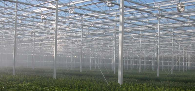 irrigation-page-overhead-fogging