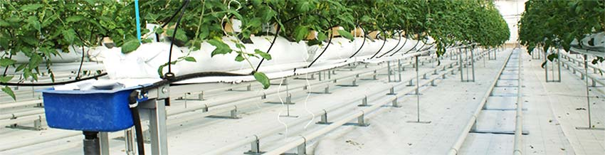 irrigation-page-recirculating-water-1-hydroponics