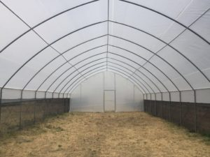 poly-tunnels-greenhouses-page-gallery (2)