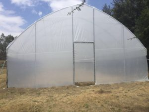 poly-tunnels-greenhouses-page-gallery (3)