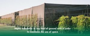 shade-greenhouses-page-banner