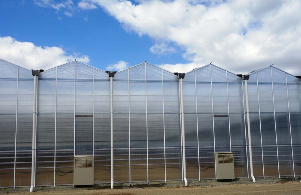 Venlo Greenhouses Javvagreen Limited