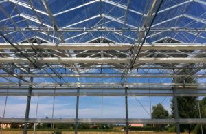 venlo-greenhouses-page-gallery-pic5